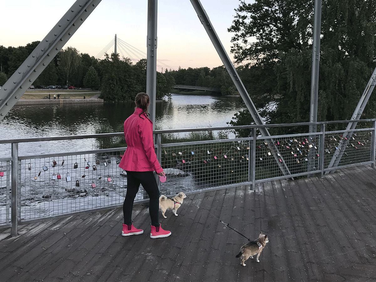 Two dogs and their owner on a bridge HaiLow